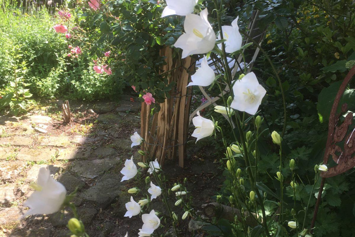 Garten der Wünsche
